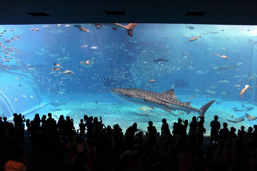 20170120-17-01-Tourist-Attractions-Okinawa